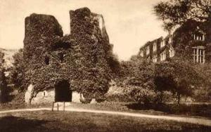 IvySchool