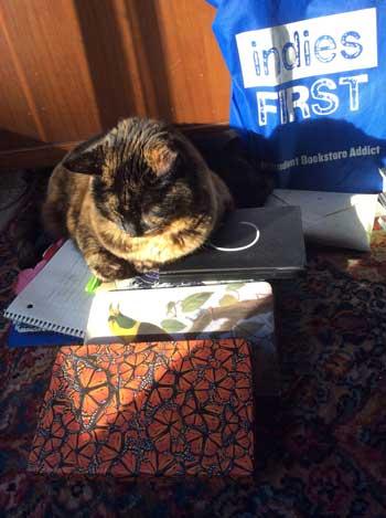 Uke Loves Journals
