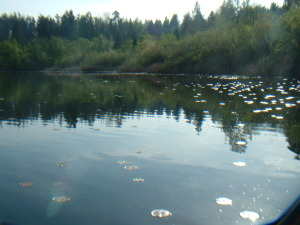 Phantom Lake Lagoon